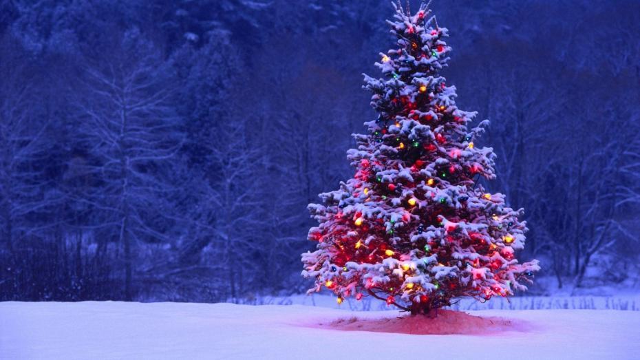 La RSE et le sapin de Noël