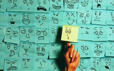 La valeur ajoutée du Travailleur Social dans la Responsabilité Sociétale des Organisations