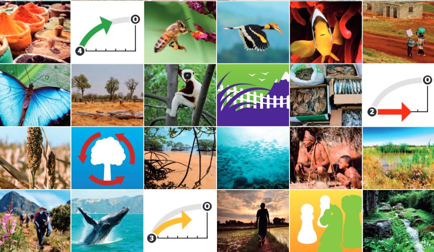 Combien pour la biodiversité ?